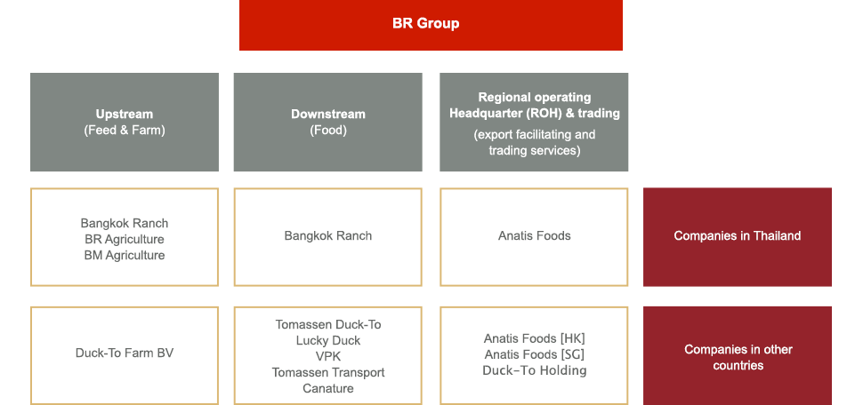 BR's group structure
